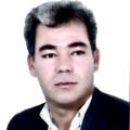 محمد رضائی