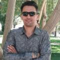 محمود محجوب